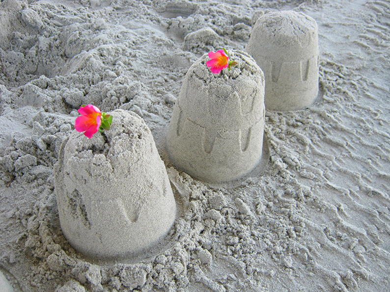 Summer time means beach time. Add some flower flare to your kids sand castles.